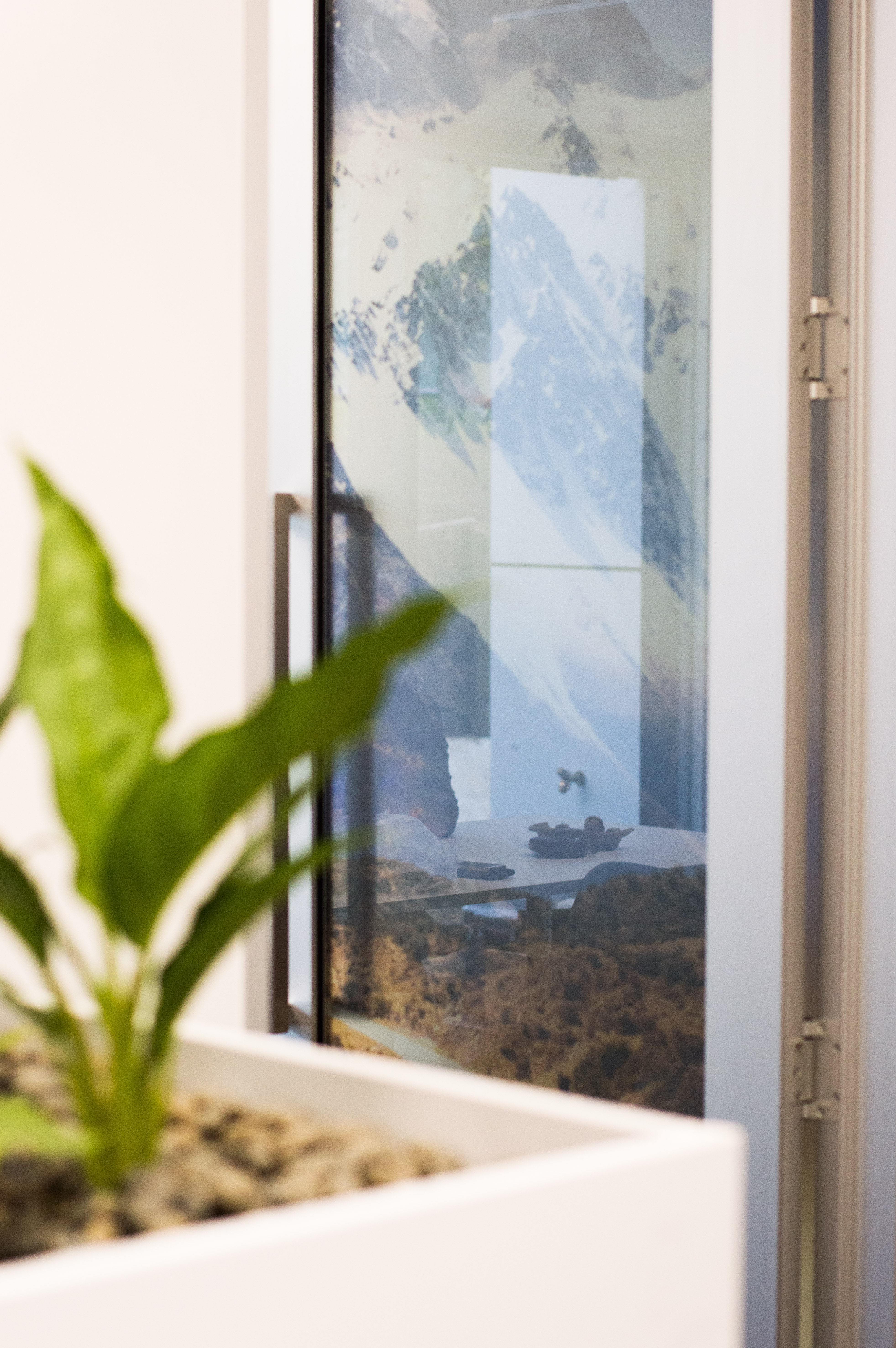 Plants Their Benefits In The Workplace Commercial Interior Design Auckland Bay Of Plenty